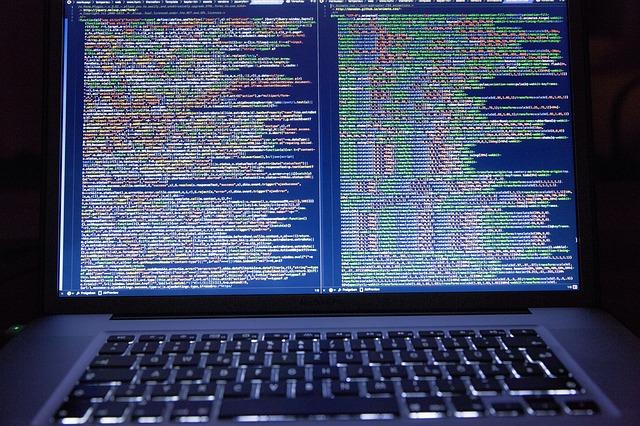 ¿Qué es lo más resaltante sobre Schnell Software?